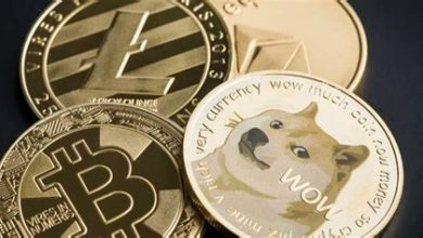Photo of Dogecoin transactions enter the real estate market